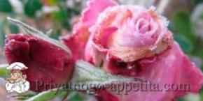 Засахаренные цветы